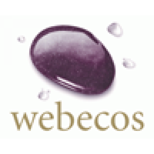 Webecos Cleansing Gel